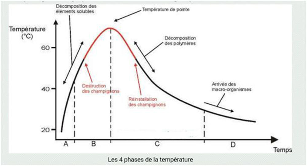 Les 4 phases de temperatureJPEG
